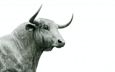 Contrarian investors: A guide to betting against the market